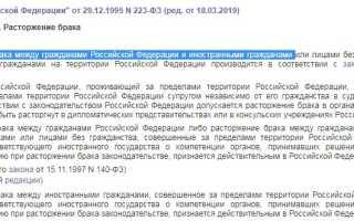Как проходит развод с иностранцем в России в 2020 году