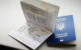 Паспорт гражданина Украины 2020: фото, общая информация, как получить