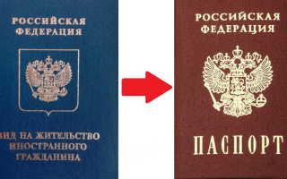 После получения ВНЖ: когда подавать на гражданство в 2020 году