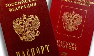 Как вписать ребенка в паспорт через госуслуги: пошаговая инструкция