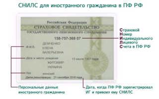 Как иностранцу получить СНИЛС в России в 2020 году