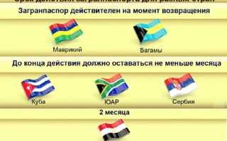 Пути проверки загранпаспорта гражданина РФ на действительность
