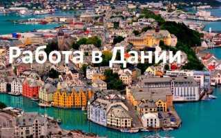 Работа в Дании: вакансии для русских, востребованные профессии