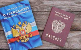 Все существующие принципы гражданства РФ в 2020 году