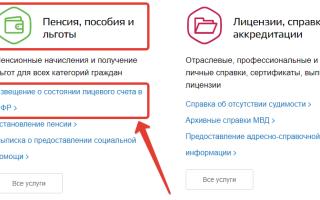 Как узнать стаж работы по СНИЛС в РФ в 2020 году
