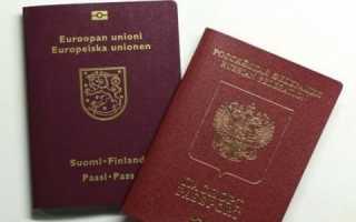 Двойное гражданство в Германии с Россией, как получить в 2020