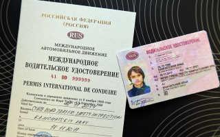 Как выглядят международные водительские права в 2020 году