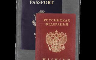 В чем заключается отличие гражданства и подданства в 2020 году
