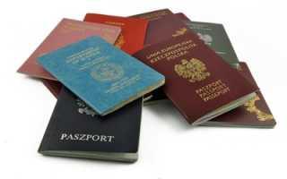 Уведомление о втором (двойном) гражданстве, как подать в 2020