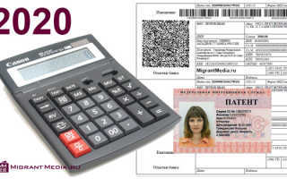 Отличия патента и разрешения на работу для иностранцев в 2020 году