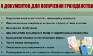 Как гражданину Армении получить гражданство РФ в 2020?