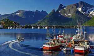 Работа в Норвегии для русских: вакансии 2020
