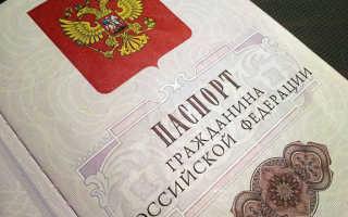 Получение гражданства РФ в Санкт-Петербурге в 2020 году