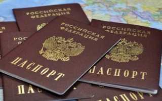Какие действия предпринять в случае кражи паспорта в 2020 году