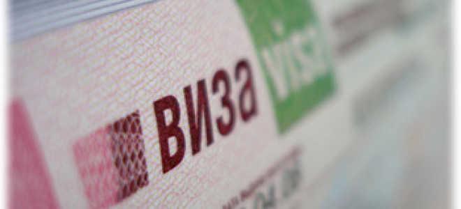 Гостевая виза в Россию для иностранцев: оформление, документы и сроки