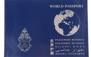 Что такое паспорт гражданина мира и как он выглядит в 2020 году