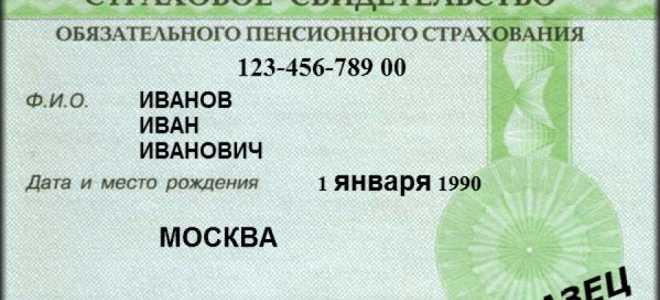 Какие есть способы узнать СНИЛС в РФ в 2020 году