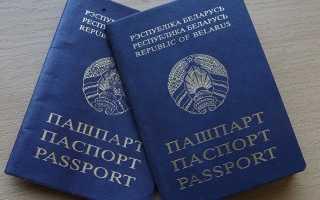 Двойное гражданство Беларусь Россия, как получить в 2020 году