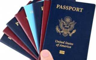 Возможности получения двойного гражданства в РФ в 2020 году