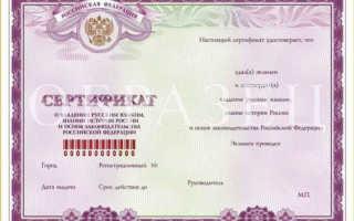 Получение гражданства РФ носителями русского языка в 2020 году