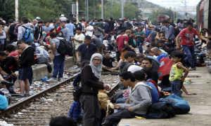 Беженец и вынужденный переселенец: основные отличия в 2020 году